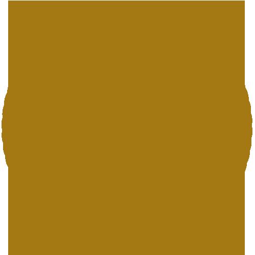 Mersin Capoeira Derneği