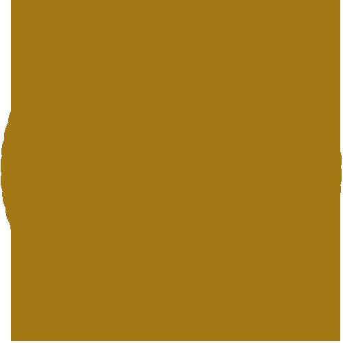 Capoeira Derneği