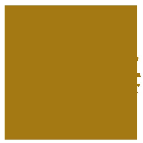 Samsun Capoeira